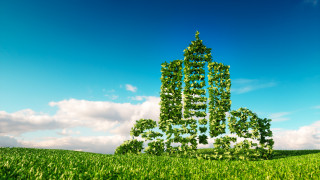 Embracing Sustainability? Everyone's a winner!