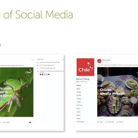 Chile Best Use of Social Media 2017 Finalist