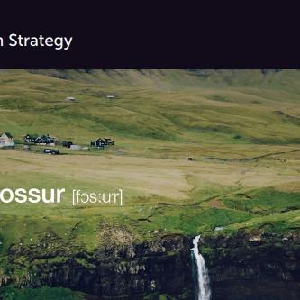 Faroe Islands Translate Best Communication Strategy Finalist