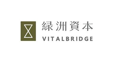 Vitalbridge