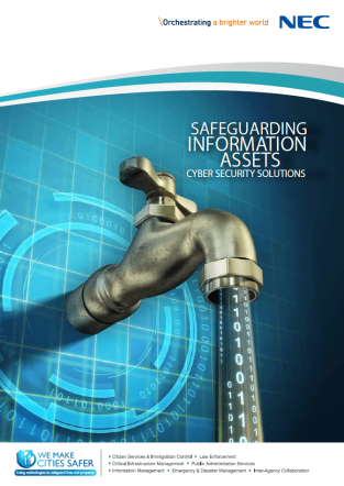 Safeguarding Information Assets