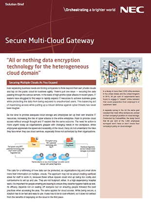 Secure Multi-Cloud Gateway