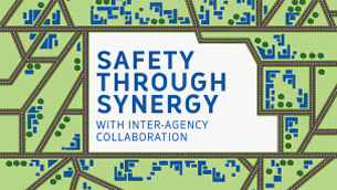 Safety Through Synergy