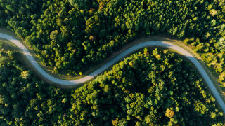 Why it's time for CPOs to take the lead on ESG