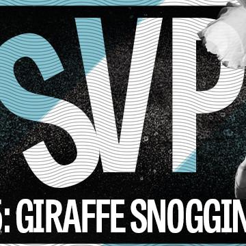 RSVP S2 Ep 2: Giraffe Snogging