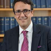 Professor Rodrigo  Olivares-Caminal